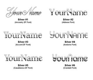 Logo Design - Silver Style